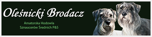 Ole�nicki Brodacz